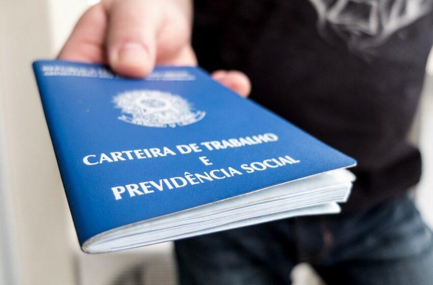 IBGE aponta crescimento do desemprego e número de trabalhadores sem carteira assinada
