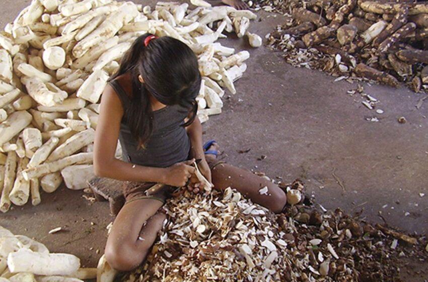 A exploração do trabalho infantil impede as crianças de sonharem com uma vida feliz